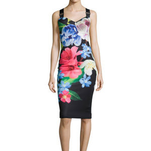 Ted Baker London Alexie Floral-Print Sheath Dress